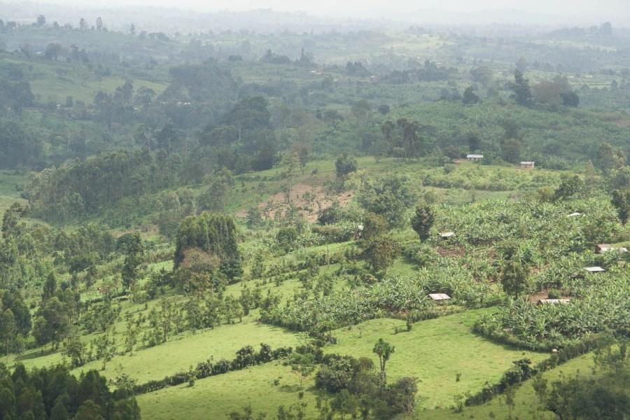 views around Lake Nkuruba