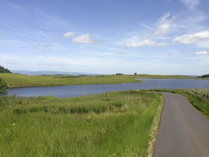 Newton Mearns Cycling