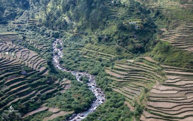 Terraced farming in Garhwal