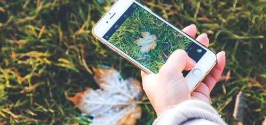 Aparat w iPhone 6 - sprawdzamy, czy robi dobre zdjęcia