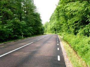 Landsväg grönska