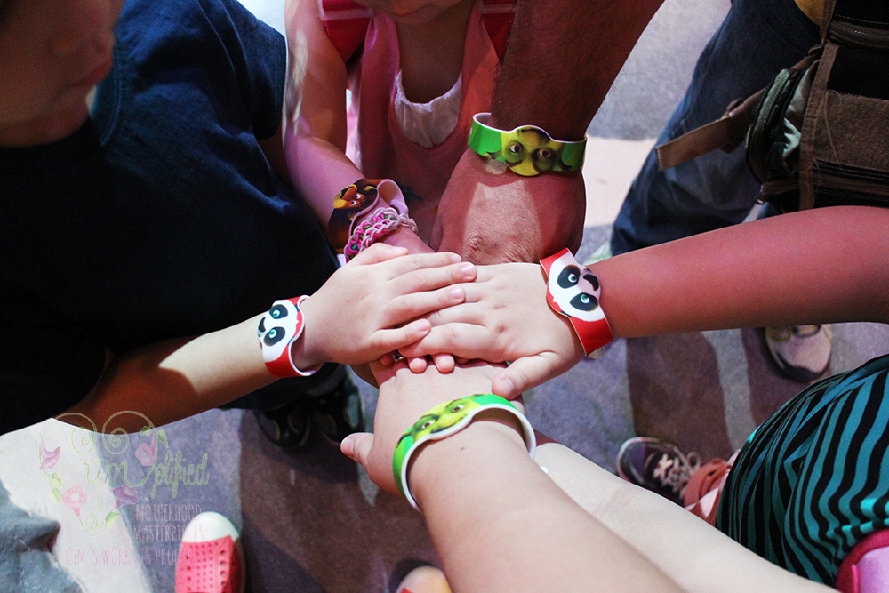 dreamplay wristbands
