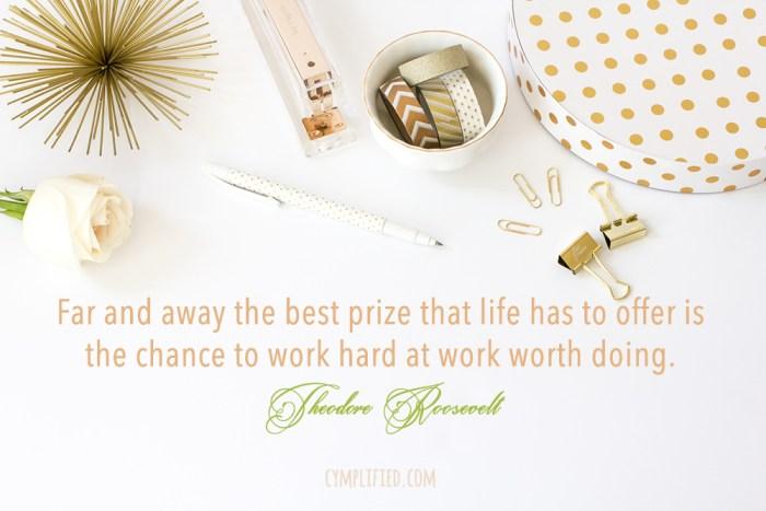 work worth doing theodore roosevelt quote