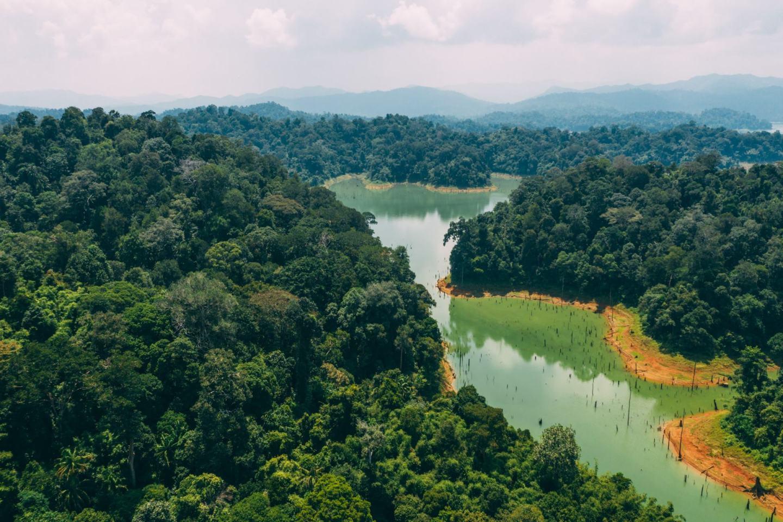 green landscape Gerik