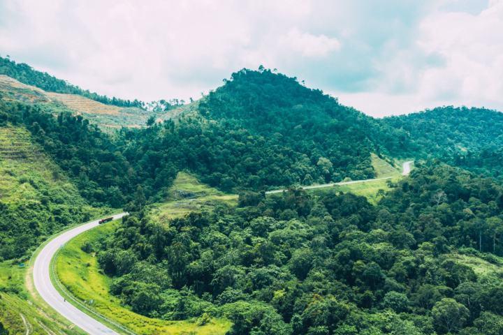 Gerik green landscape
