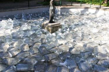 Mise à sac, 2011 Co-production Jérémy LOPEZ sacs plastique, eau, 600 x 500 cm, Exposition Ici, Parc de Caveirac