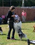 Katherine and her Shetland Sheepdog Spark