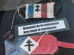 SMglise resistance