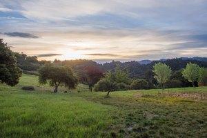 Calistogia Sunrise