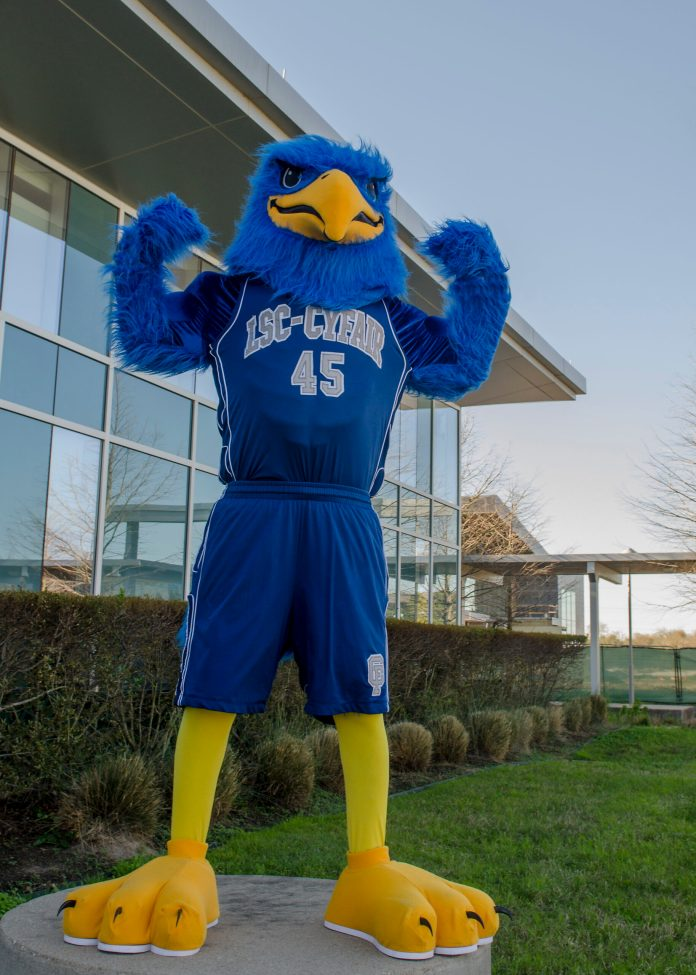 Lone Star College - CyFair's Cy the Falcon, in Cypress, Texas. (LSC courtesy photo)