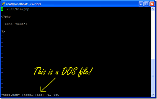 Eclipse created a DOS file.