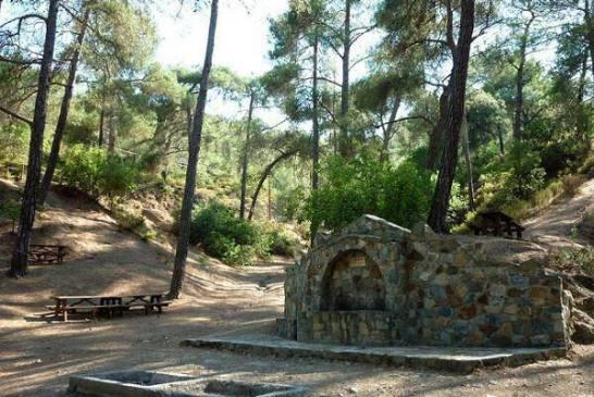 24. Agia Paraskevi Limassol District