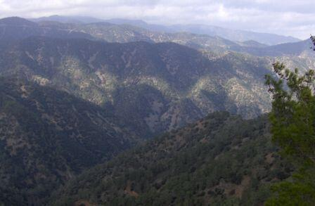 Paphos Forest Area And Surrounding Communities  – Provinces Nicosia and Paphos