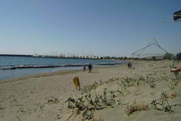 Aoratoi Beach – Blue Flag