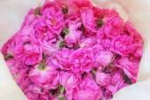 Rodostagma Agrou – Agros Rose Water