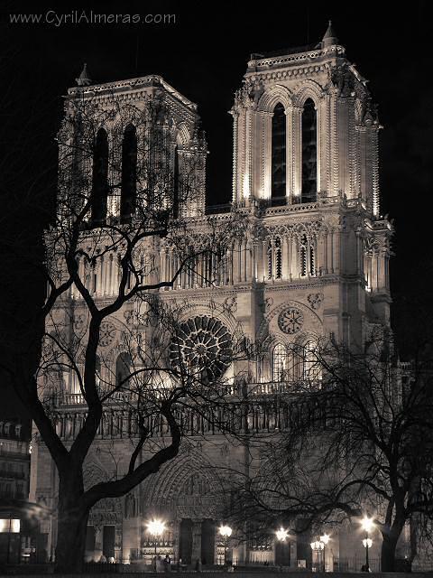La Nuit En Noir Et Blanc