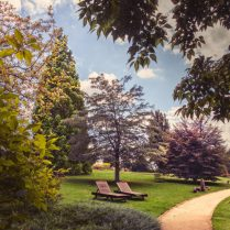 Léto v trojské botanické zahradě (2)