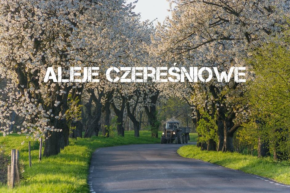 Aleje Czereśniowe