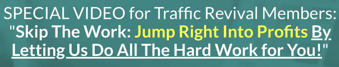 How Traffic Revival Will Help You Get Free Traffic From 3 Different Sources Which Can Bring You Passive Income 12