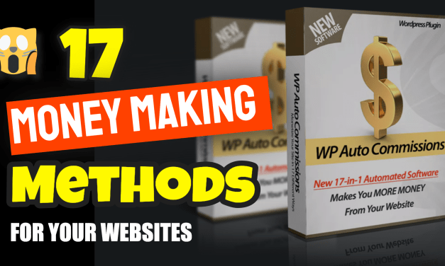 17 Money Making Methods for WordPress