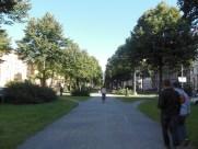 Stockholm2015 (21)