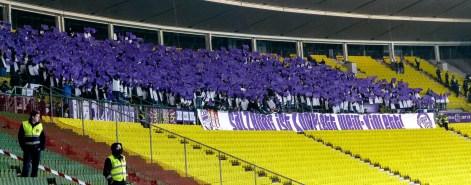 Rapid Wien Austria Salzburg 2015 (1)