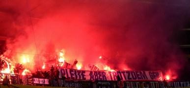 Rapid Wien Austria Salzburg 2015 (5)