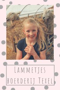 lammetjes boerderij Texel Uitjes op Texel