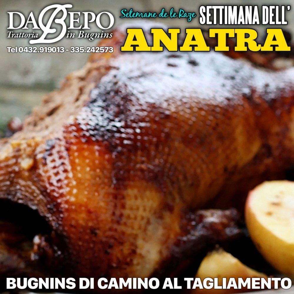 Quad Anatra 1024x1024 17 20 Maggio 2018   Settimana dellAnatra Da Bepo