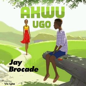 Akwu Ugo - Jay Brocade 480