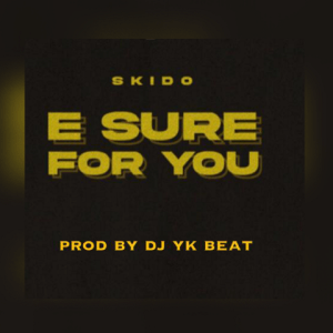 E Sure For You - Skido 480