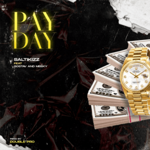 Pay Day by Saltikizz featuring Gostav, Meeky