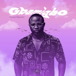 Gbamigbo Olatunji Hayzaird 480