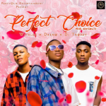 Perfect Choice - Dj Trophy ft. Witklef, Dreno 480