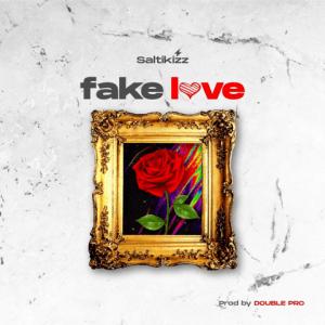 Fake Love by Saltikizz
