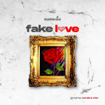 Fake Love by Saltikizz
