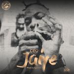 Jaiye - CEO