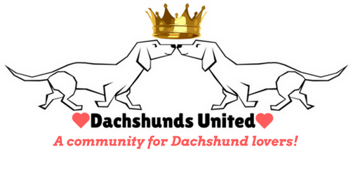 Dachshunds United