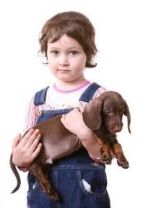 Kind mit Dackelwelpe