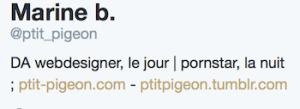 twitter profile ptit_pigeon