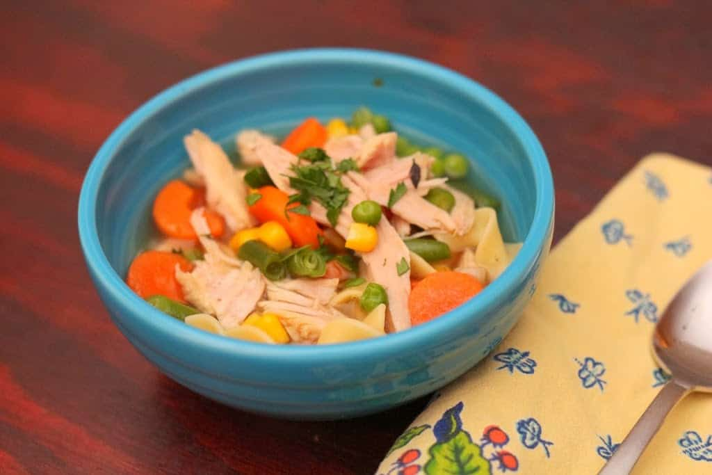 Pressure Cooker Turkey Noodle Soup with Vegetables - DadCooksDinner