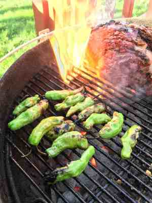 Grilled Shishito Peppers | DadCooksDinner.com