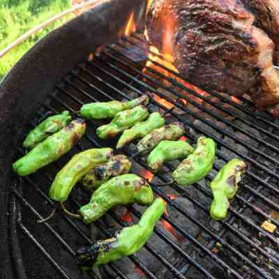 Grilled Shishito Peppers | DadCooksDinner.com