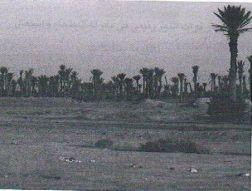 صورة لساحة معركة البطحاء