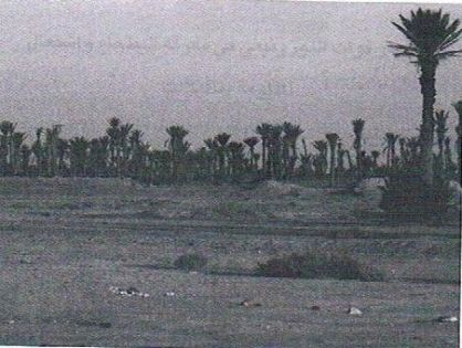 تافيلالت على صفيح ساخن: معركة البطحاء[1] 9غشت 1918
