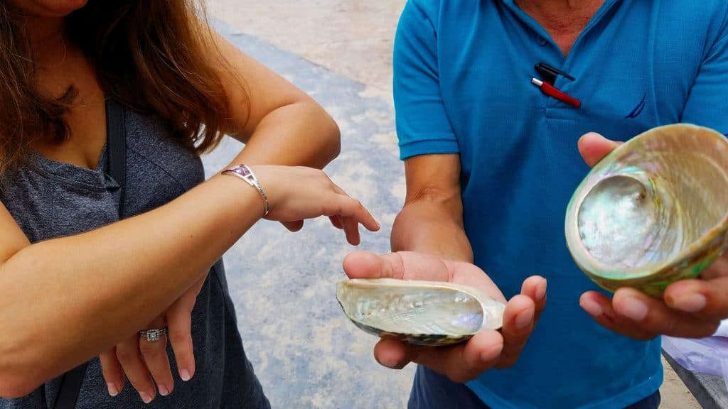Mahahual Mexico - A local vendor showing us a mother of pearl oyster.