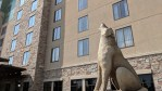Great Wolf Lodge Review - Bloomington MN - Front of Hotel