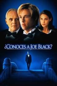 ¿Conoces a Joe Black? – Latino HD 1080p – Online