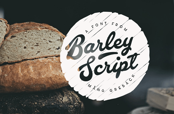 Barley Script Font