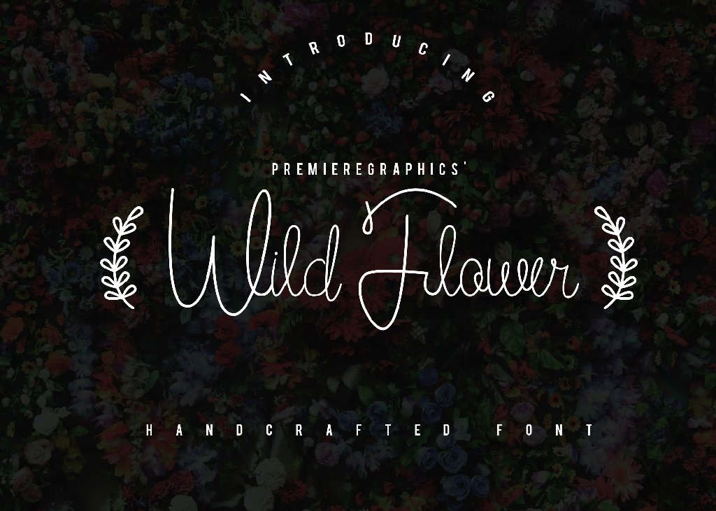 wild-flower-script
